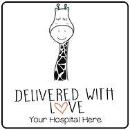 Your Hospital Here.jpg