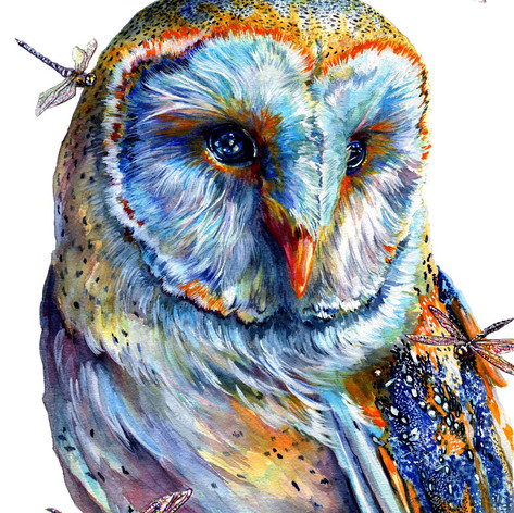 Owl and Moths