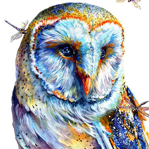 Owl and Dragonflies