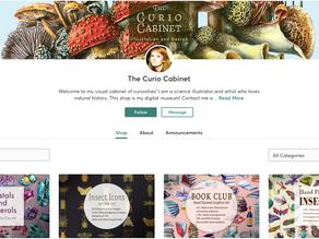 The Curio Cabinet Store