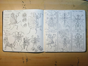Critter Cards...