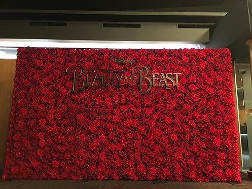 Red Velvet Wall