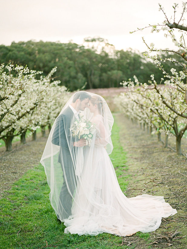 260730-romantic-orchard-styled-anniversa