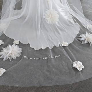 Studio 1118 Couture Veil