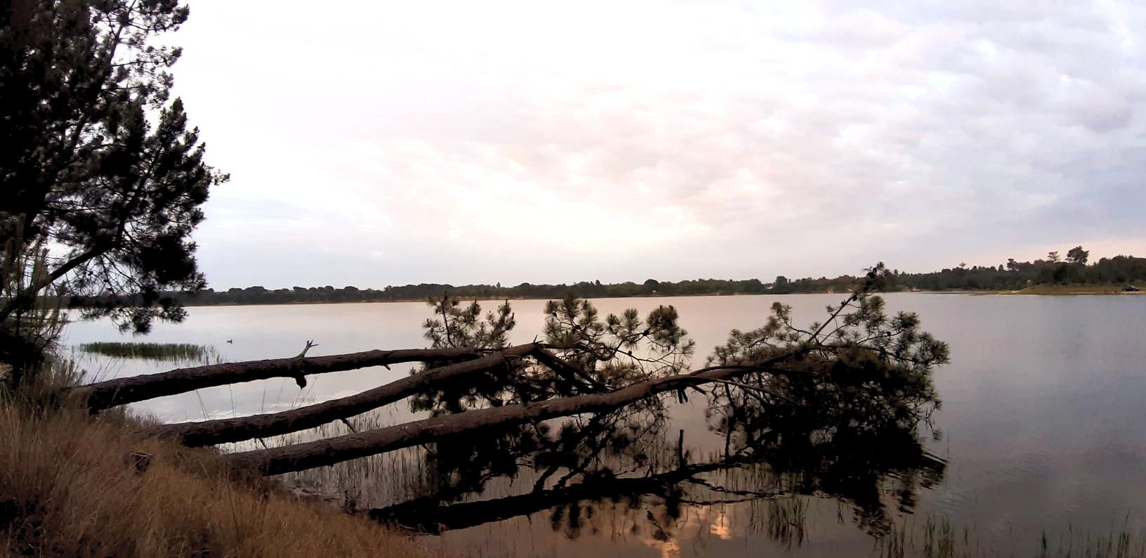 Vista sobre a barragem de Magos