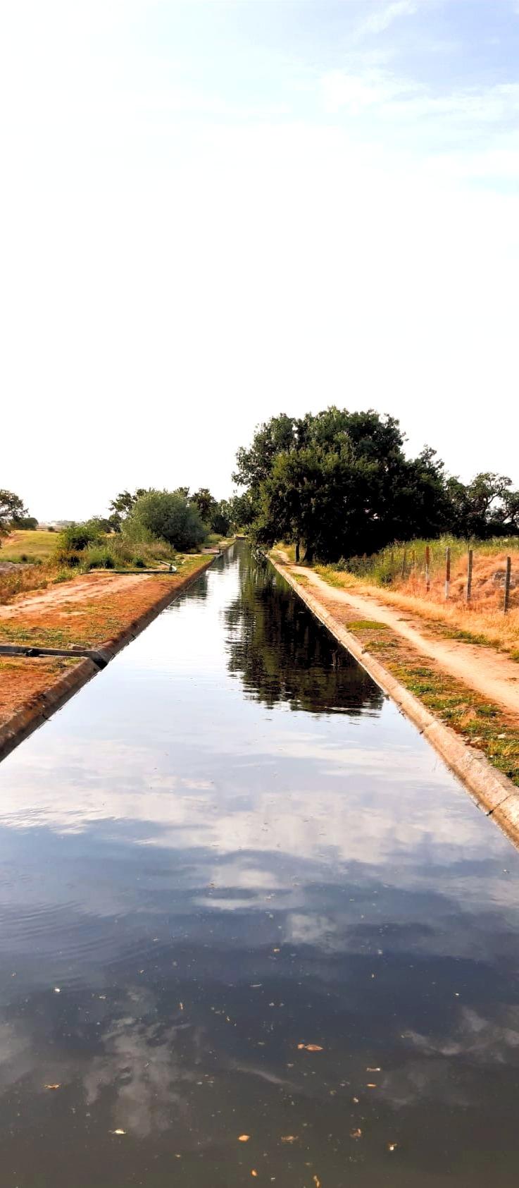 Canal de água para campos de arroz