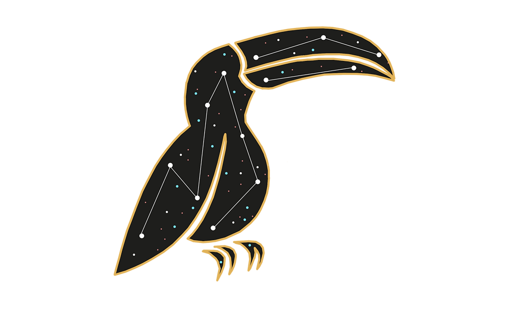 A cartoon toucan constellation with pink, blue, and white stars.