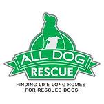 All Dog Rescue