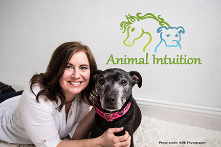 Hands-on healing for dogs, cats, and horses in the Twin Cities