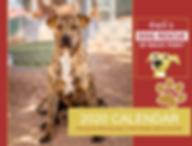Barb's Dog Rescue 2020 Calendar