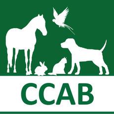 CCAB 2021.jpg