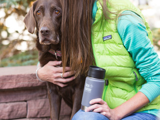 June Highlight: Klean Kanteen