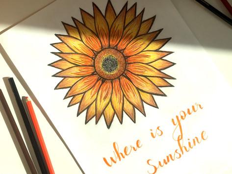 Senin Güneş Işığın Nerede?