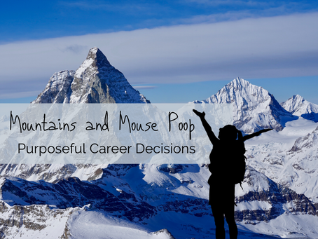 Mountains and Mouse Poop: Purposeful Career Decisions