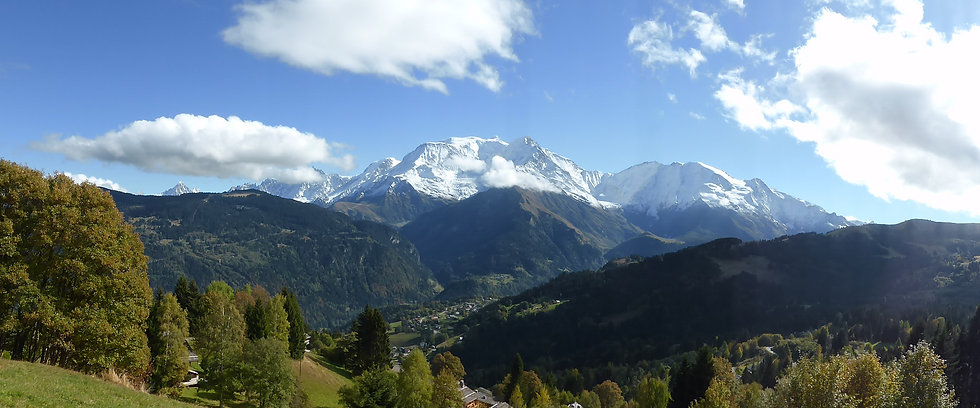 Mont Blanc in summer - Panorama