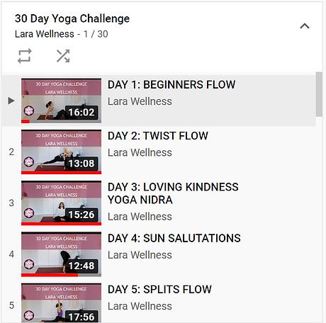 website 30 day challenge screenshot.PNG