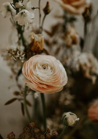 No Ordinary Love - Sarah Taylor Photo an