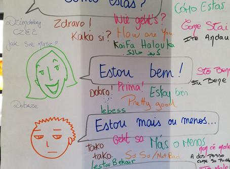Formação em animação intercultural e linguística, para profissionais I Training for professionals