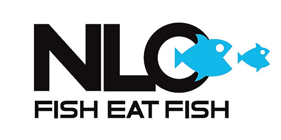 NLO logo_edited.jpg