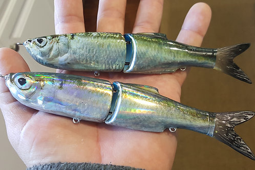 Foil BlueBack Herring Single Skinz
