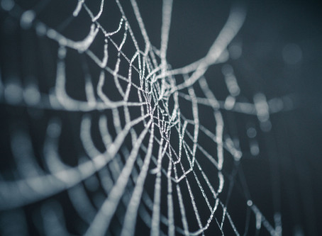 The Great Web