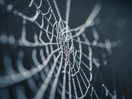REVEALED: The inventor of the web was NOT a bookkeeper