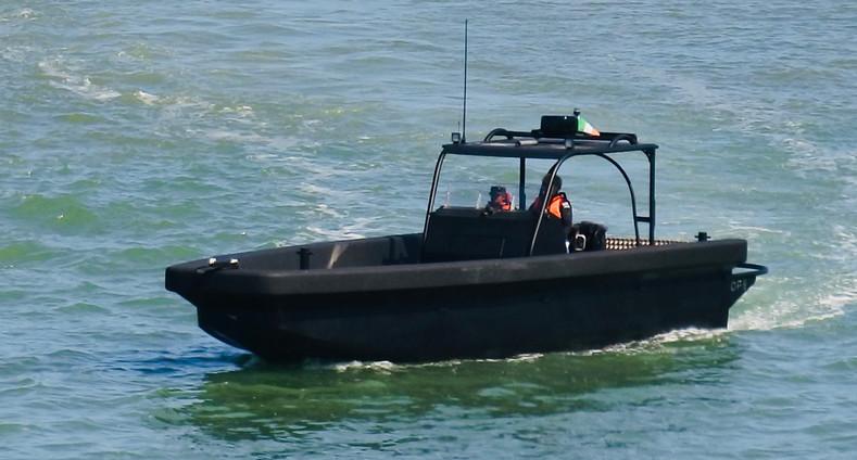 Roughneck M10