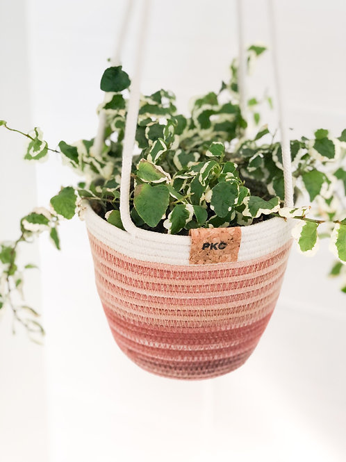 Variegated Terracotta Hanging Basket (Small)