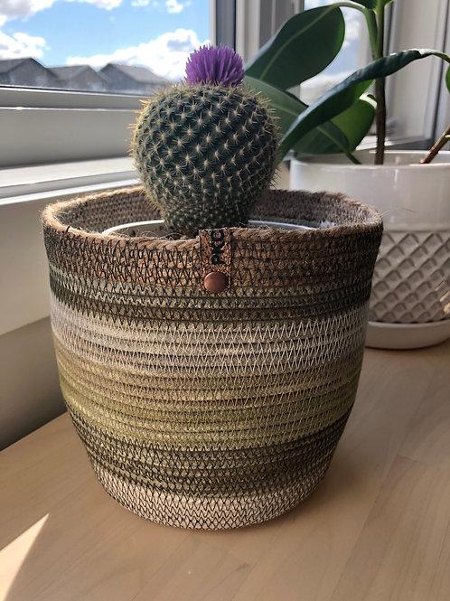 Variegated Green with Twine Basket (Medium)