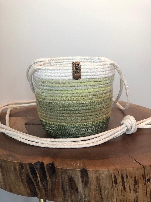 Variegated Green Hanging Basket (Small)
