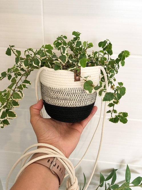 Black and White Hanging Basket (Small)