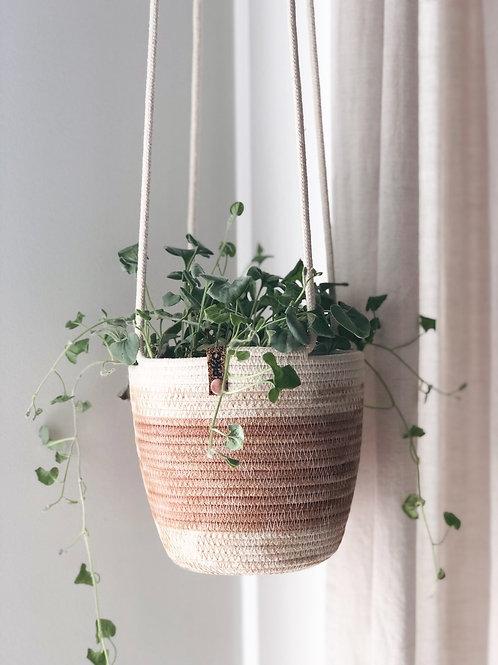 Blush Hanging Basket