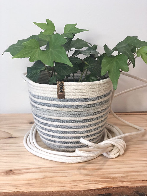 Grey variegated hanging basket