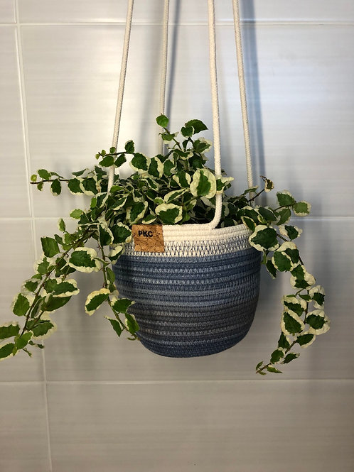 Variegated Blue Hanging Basket (Small)