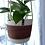 Thumbnail: Colour Block Hanging Basket (Small)