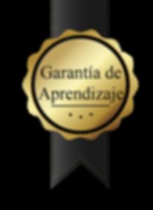 garantía_de_calidad_Mesa_de_trabajo_1.pn