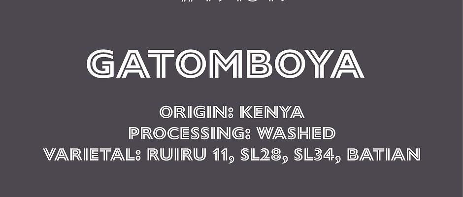 Gatomboya AB - Washed