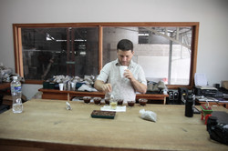 Sample Cupping