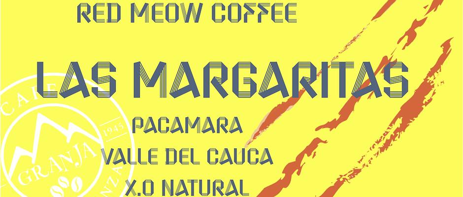 Las  Margaritas- Pacamara- X.O Natural