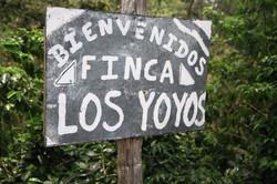 Finca LosYoyos