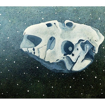 PIN_2020-um_asteroide.jpg