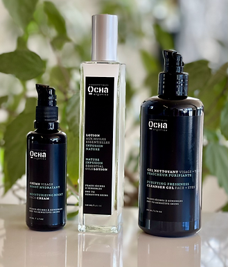 Normal to Oily Skin BEAUTY RITUAL