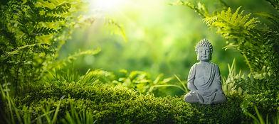 Buddha statu in natural background.jpg