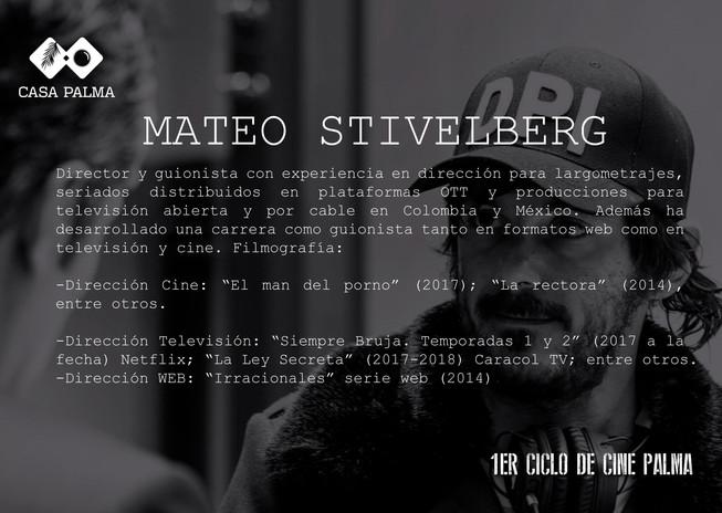 MATEO STIBELBERG tx.jpg