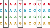 Haplotype_Icon.png