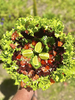 Salada organica.heic