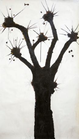 Les Bois Sont Deja Noir 2012