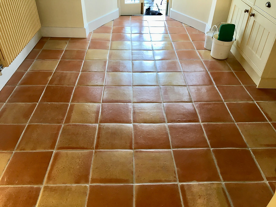 Terracotta cleaning Brighton Eastbourne
