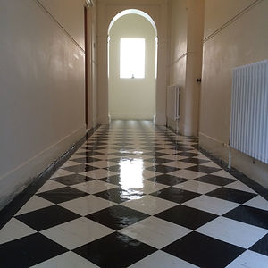 vinyl floor stripping sealing cleaning p