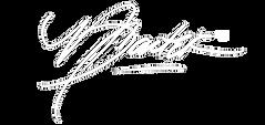 Nysia white Logo.png